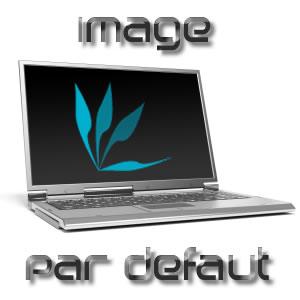 Dalle 17'0 LCD brillante pour HP pavilion DV9000 (légères traces de rayures)